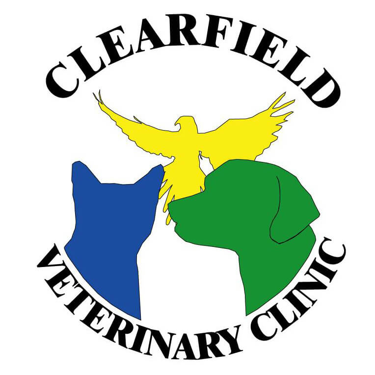 Clearfield Veterinary Clinic P.C.